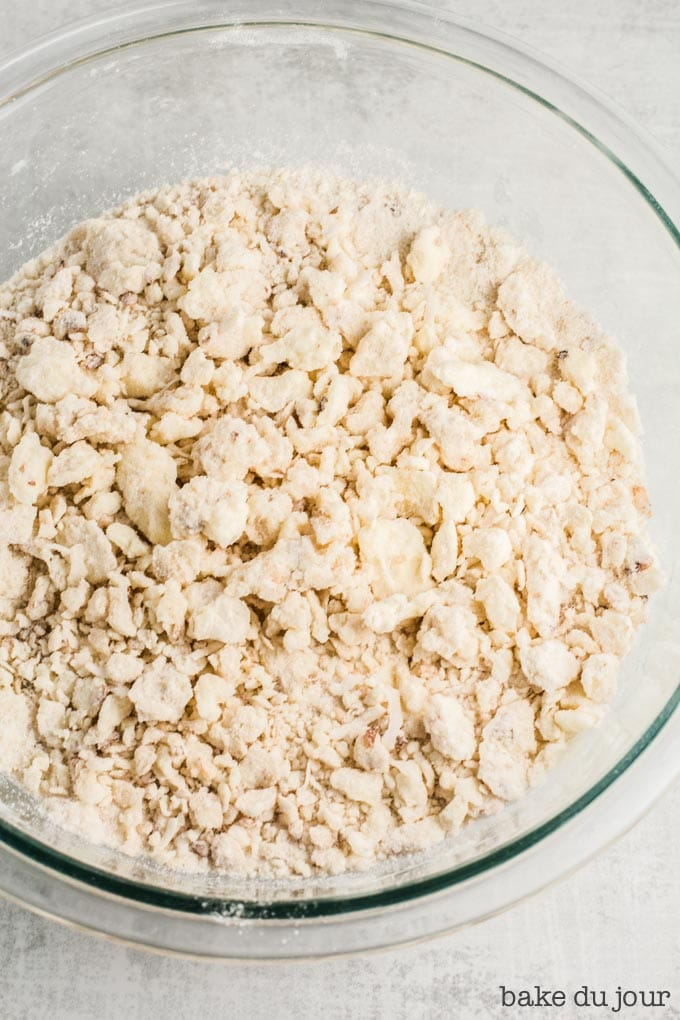 A bowl filled with the dough for the coconut shortbread crust, after the butter has been cut into the rest of the dry ingredients